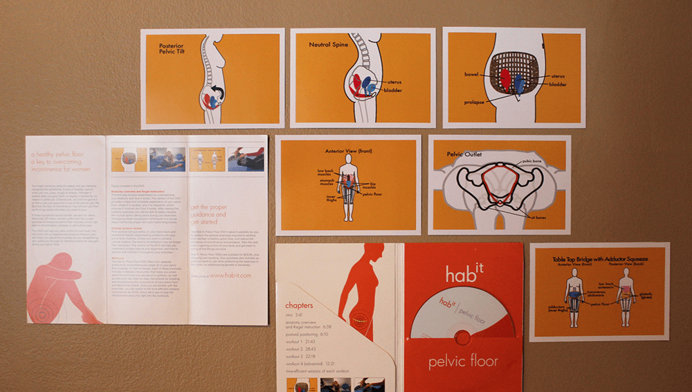 Educational materials for The Habit show Georgia's illustration skills